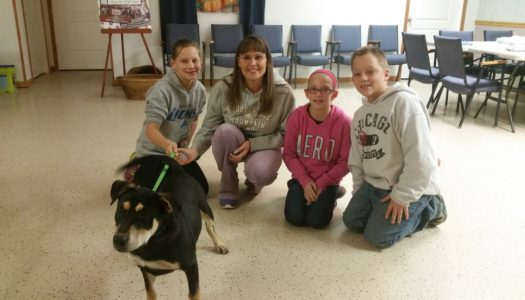 Joey Adopted!