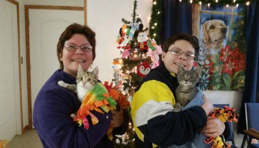 Cookie & Bucket Adopted together!