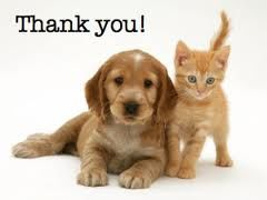 thank-you-dog-and-cat