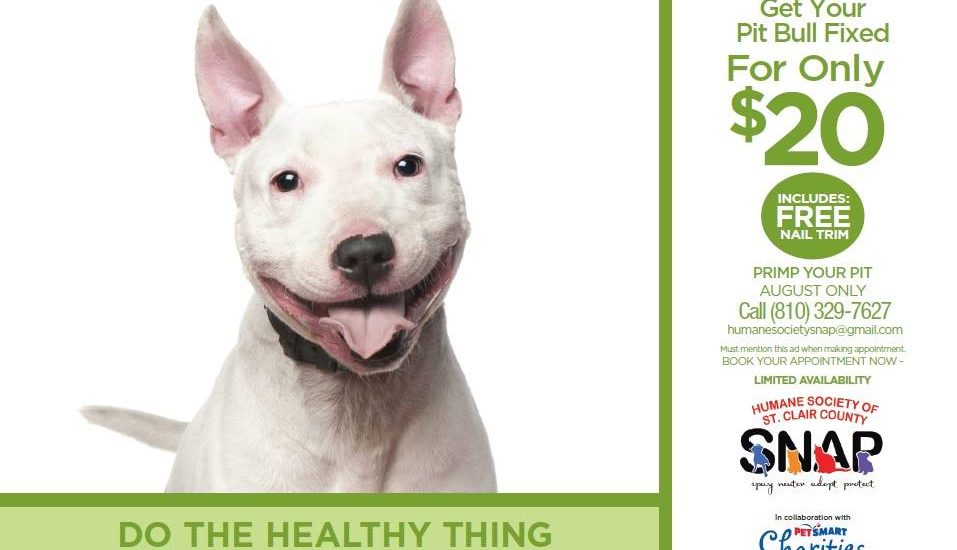 Petsmart Campaign Primp Your Pit Humane Society Of St Clair